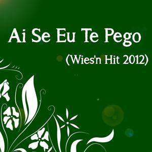 Ai Se Eu Te Pego (Wies'n Hit 2012)