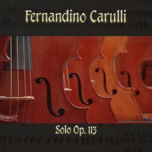 Fernandino Carulli: Solo, Op. 113