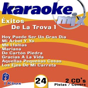 Exitos De La Trova 1 (Karaoke/Cover Version)