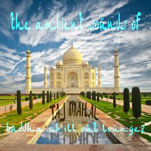 The Ambient Sounds of Taj Mahal, Vol. 2 (Buddha Chill out Lounge)