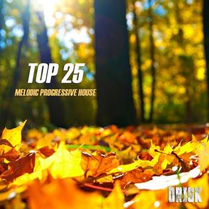 Melodic Progressive House - Top 25