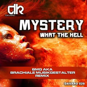 What the Hell (BMG a.k.a. Brachiale Musikgestalter Remix)