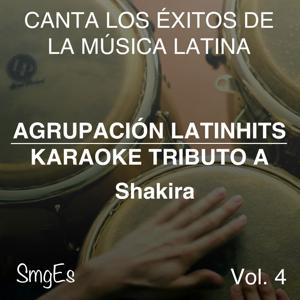 Instrumental Karaoke Series: Shakira, Vol. 4