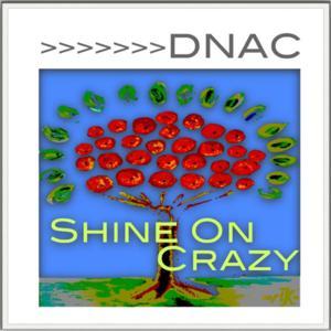 Shine On Crazy