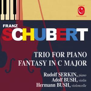 Schubert: Piano Trio, D. 929, Op. 100 & Fantasia, D. 934, Op. 159