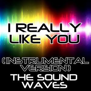 I Really Like You (Instrumental Version)
