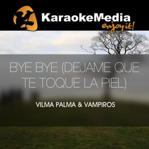 Bye Bye (dejame Que Te Toque La Piel)(Karaoke Version) [In The Style Of Vilma Palma & Vampiros]