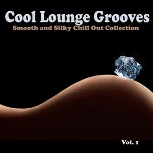 Cool Lounge Grooves, Vol. 1 - Smooth and Silky Chill Out Collection