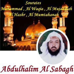 Sourates Muhammad , Al Waqia , Al Mujadalah , Al Hashr , Al Mumtahanah (Quran)