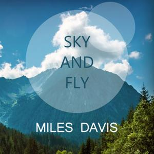 Sky And Fly