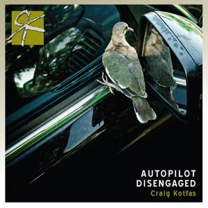 Autopilot Disengaged