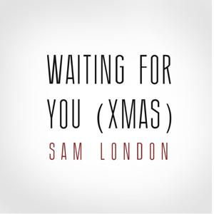 Waiting for You ( Xmas)