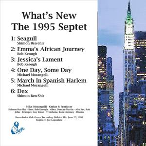 What's New: The 1995 Septet