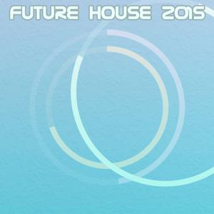Future House 2015 (111 Songs)
