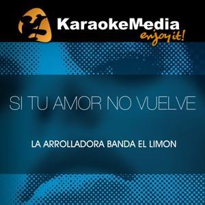 Si Tu Amor No Vuelve(Karaoke Version) [In The Style Of La Arrolladora Banda El Limon]