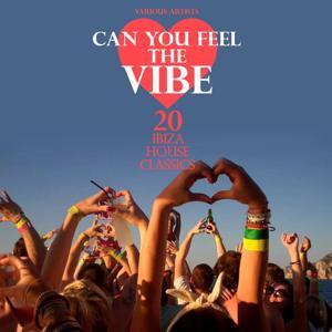 Can You Feel the Vibe (20 Ibiza House Classics)