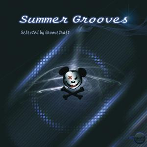 Summer Grooves (Selected by GrooveCraft)