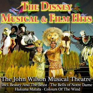 The Disney Muiscla & Film Hits
