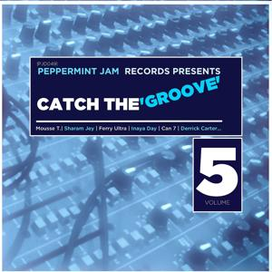Peppermint Jam Records Pres., Catch the Groove, Vol. 5