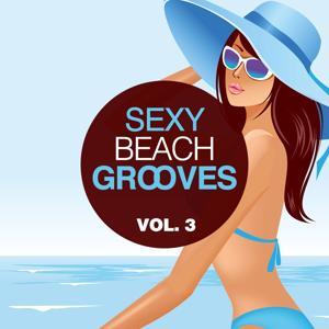 Sexy Beach Grooves, Vol. 3