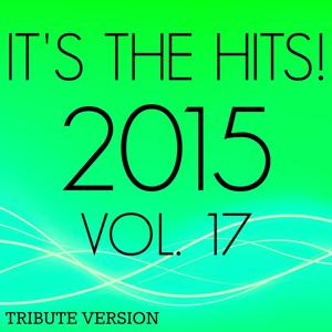 It's the Hits! 2015, Vol.17
