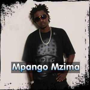 Mpango Mzima