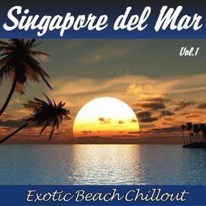 Singapore del Mar, Vol.1 (Exotic Beach Chillout)