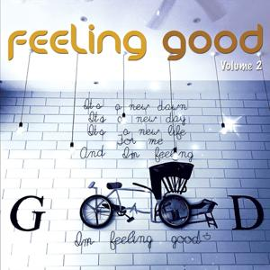 Feeling Good, Vol. 2 (Positive Chill Grooves)