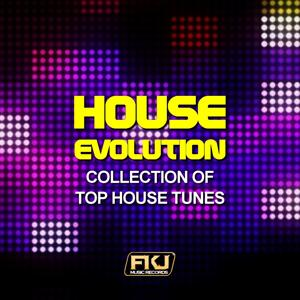 House Evolution (Collection of Top House Tunes)