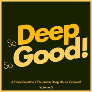 So Deep, so Good! A Finest Selection of Supreme Deep House Grooves, Vol. 5