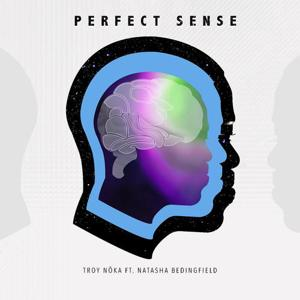 Perfect Sense (feat. Natasha Bedingfield)