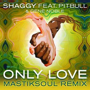 Only Love (Mastiksoul Remix)