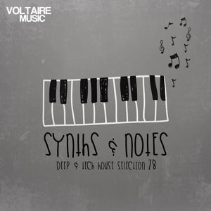 Synths and Notes 28