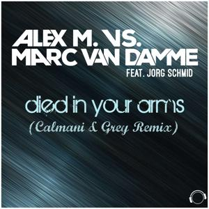 (I Just) Died in Your Arms (Calmani & Grey Remix)