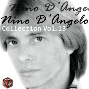 Nino D'Angelo Collection, Vol. 13