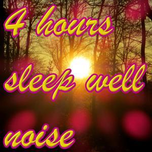 4 hours sleep well noise