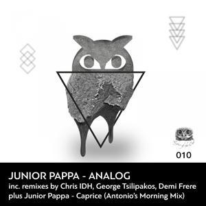 Analog (Remixes)