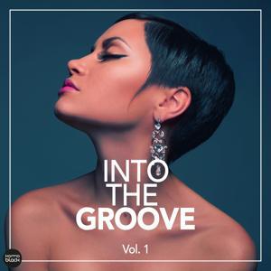 Into The Groove - Fantastic Deep House Cuts, Vol. 1