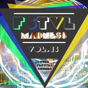 FSTVL Madness, Vol. 15 (Pure Festival Sounds)