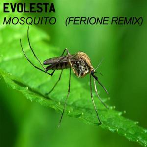 Mosquito (Ferione Remix)