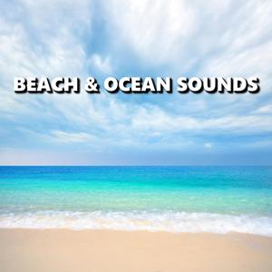 Beach & Ocean Sounds