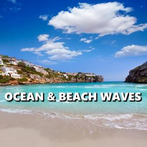 Ocean & Beach Waves