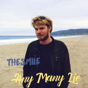 Any Many Lie
