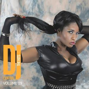 DJ Central - The Hits, Vol. 19