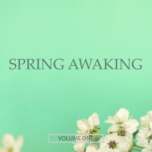 Spring Awaking, Vol. 1 (Finest Selection Of Chill Out & Ambient Music)