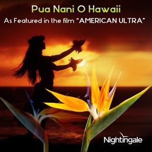 Pua Nani O Hawaii (feat. Leimamo Fish) [As Featured in the film