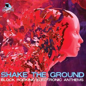 Shake the Ground: Block Rocking Electronic Anthems