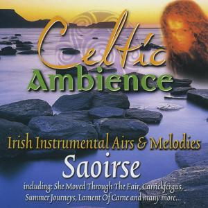 Celtic Ambience: Irish Instrumental Airs & Melodies