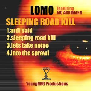 Sleeping Road Kill