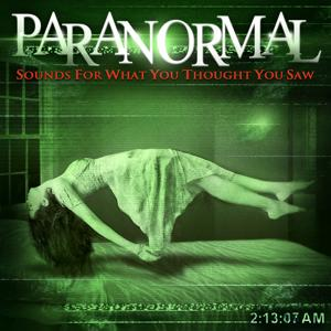 Paranormal: Sounds for What You Thought You Saw